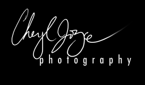 Cheryl Joyce Photography